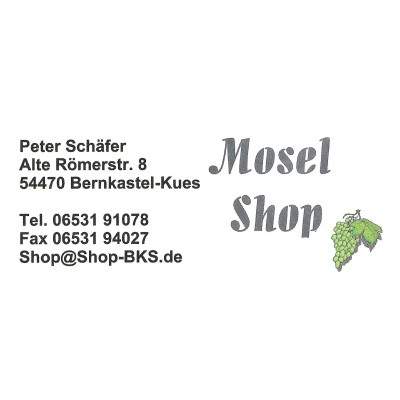 Pinball Party Wittlich - Mosel Shop